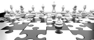schacket pieces white Royaltyfri Bild