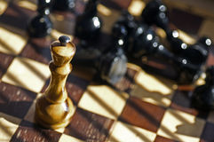 Schacket stiger ombord royaltyfri bild