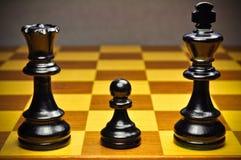 schackfamilj Royaltyfria Bilder