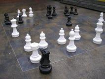 schackjätte arkivfoton