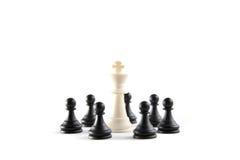 schackkonung som rundas upp Royaltyfria Bilder