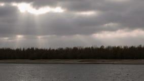Schackningsperiod för höstlandskaptid Mörka moln med solstrålar flyger över blast av skogträd arkivfilmer