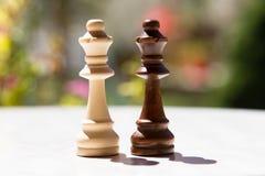 Schackstycken på tabellen Royaltyfria Foton