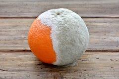 Schade aan de sinaasappel door vormsporen Royalty-vrije Stock Foto