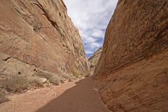 Schaduw en Licht in een Smalle Woestijncanion royalty-vrije stock afbeelding
