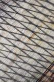 Schaduw en lijn op houten vloer Stock Afbeelding