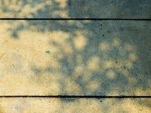Schaduw van boom op de cementgrond Royalty-vrije Stock Afbeeldingen