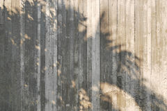 Schaduw van boom op ruwe concrete muur Stock Afbeelding