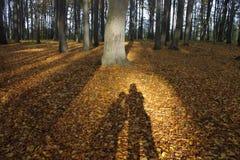 Schaduw van een paar in bos 01 stock fotografie
