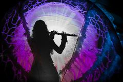 Schaduw van een vrouw het spelen fluit royalty-vrije stock afbeeldingen