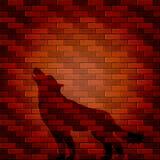 Schaduw van wolf op een bakstenen muur Stock Afbeelding