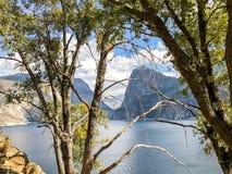Schaduwen op Bomen en de Bergen van Hetch Hetchy stock foto