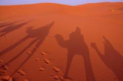 Schaduwen op de duinen in de woestijn van Marokko Royalty-vrije Stock Fotografie