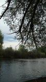 Schaduwen op de rivier Stock Foto