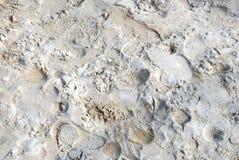 Schaduwen op het zand Stock Foto