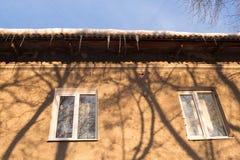 Schaduwen van bomen op de muur Stock Foto