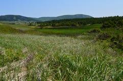 Schaduwen van groen landschap Royalty-vrije Stock Afbeelding