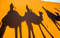 Schaduwen van Kamelen in het zand van de woestijn van de Sahara - Marokko stock foto's