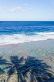 Schaduwen van palmen op water hieronder op Tamakautoga-koraalstrand stock foto's