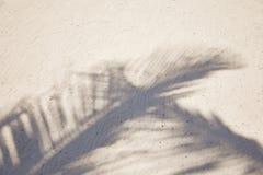 Schaduwen van palmvarenbladen die op geweven zandstrand fladderen Caraïbische overzees Riviera Maya Mexico Royalty-vrije Stock Foto's