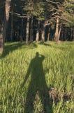 Schaduwmens op gras Stock Foto