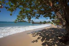 Schaduwrijk strand op Caraïbisch Eiland van St Lucia Royalty-vrije Stock Afbeeldingen
