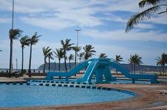 Schaduwrijke palmen op Durban beachfront. Stock Fotografie
