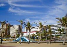 Schaduwrijke palmentribune op Durban beachfront. stock afbeeldingen