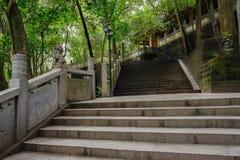 Schaduwrijke steenstappen vóór de oude Chinese bouw in de zomerhout Stock Foto