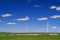 Schaf- und Windenergie genration auf Wiese Lizenzfreie Stockfotografie