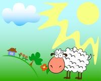 Schafe auf dem Feld Lizenzfreie Stockfotografie