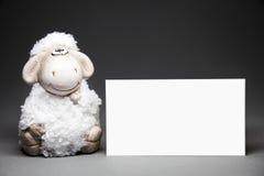Schafe mit leerer Karte Lizenzfreie Stockbilder