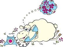 Schafe mit Telefon Stockfoto
