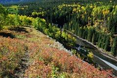 Schafe River Valley im Herbst lizenzfreies stockbild