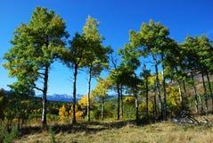 Schafe River Valley im Herbst Lizenzfreie Stockfotos