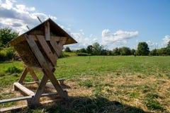 Schafzufuhr gegen Hintergrund des grünen Feldes Lizenzfreie Stockfotos