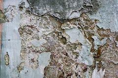 Schale der mehrschichtigen gemalten Wand Stockbild