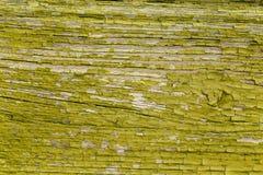 Schale des alten Lackes Stockbilder