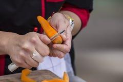 Schale einer Karotte Stockfotografie