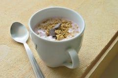 Schale gefüllt mit Jogurt und muesli Lizenzfreies Stockbild