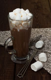 Schale heißer Kakao mit Eibischen Lizenzfreie Stockfotos