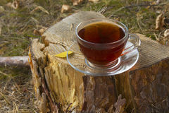 Schale heißer Tee auf dem Stumpf am Herbstwetter Stockbild