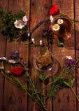 Schale Kräutertee auf Dunkelheit alterte rustikalen Hintergrund, Draufsicht, Platz für Text, Grenze Lizenzfreies Stockfoto