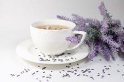 Schale Lavendeltee Stockbilder