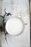 Schale Milch lizenzfreies stockfoto