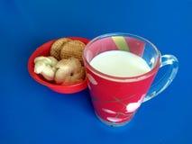 Schale Milch mit Plätzchen Lizenzfreies Stockbild