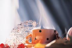 Schale mit dem Dämpfen des Getränks und der trockenen Blätter und der Beeren Kunstfoto Die Atmosphäre eines gemütlichen alltäglic stockbilder