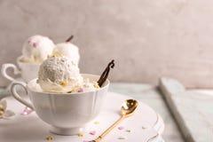 Schale mit köstlichem Vanilleeis lizenzfreies stockbild