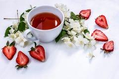 Schale schwarzer Tee mit aromatischen Jasminblumen und -erdbeeren auf weißem Hintergrund Lizenzfreie Stockfotografie