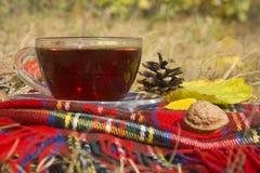Schale schwarzer Tee mit kariertem Schal Stockbilder